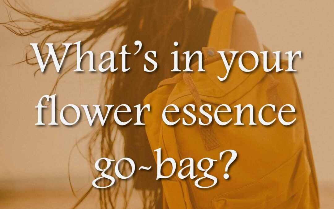 What's in your flower essence go-bag?